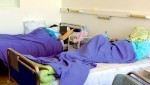 المينانجيت يقتل طفلة ويصيب 7 آخرين في الدار البيضاء