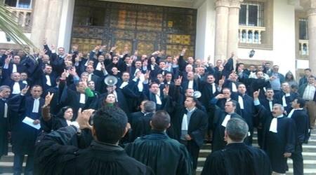 محامو المغرب غاضبون …. !