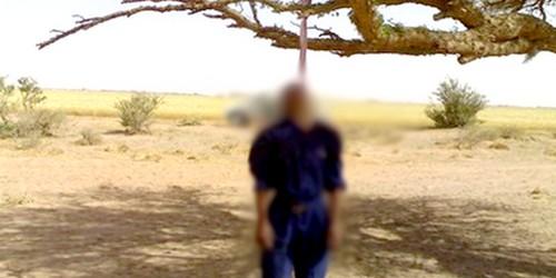 العثور على مخزني سابق مشنوقا على شجرة بعد ثلاثة أيام من انتحاره بالرباط