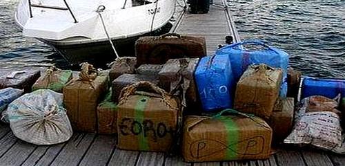 """إحباط محاولة تهريب 170 كلغ من الحشيش انطلاقا من شاطئ """"الداليا"""""""