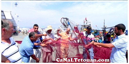 حوت (النيكرو) يهدد ميناء المضيق بالإفلاس