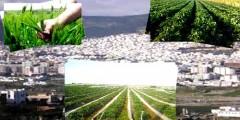 ازيد من 97 الف هكتار لمختلف المزروعات في الموسم الفلاحي الجديد باقليم تطوان