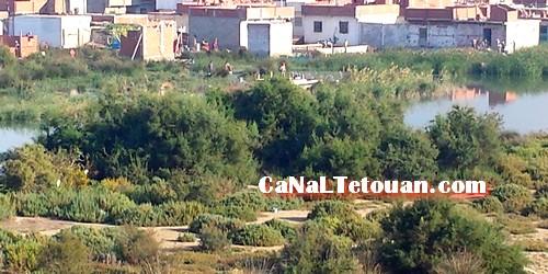 البناء العشوائي بحي الديزة وصل إلى داخل مياه النهر
