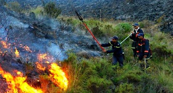 مصرع عنصر من المندوبية السامية للمياه في حريق غابوي بالمضيق