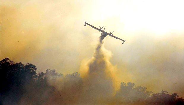 حريق مهول يأتي على أزيد من 50 هكتار من محمية سبتة المحتلة