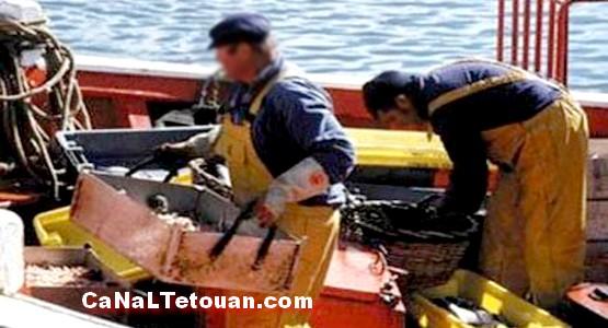صبي مغربي أصم أبكم يتعرض للطعن في إسبانيا بسبب حفنة سمك !