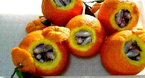 اعتقال مغربي بمليلية حاول تهريب الحشيش داخل حبات البرتقال