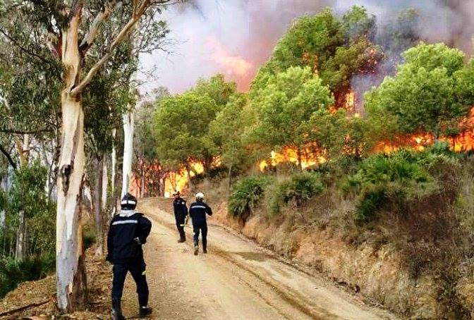 حريق غابوي ينال من 30 هكتار بسبتة ويخلق قلقا داخل المدينة