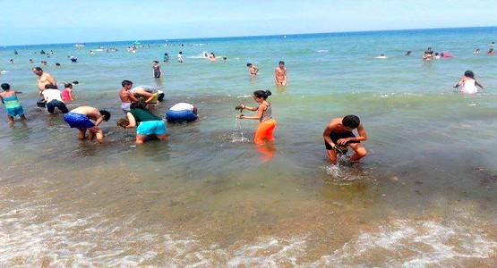 هذا ما قام به المصطافون في شاطئ مرتيل .. !