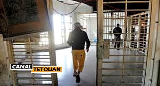 على طريقة الأفلام الهوليودية … مافيا مغربية تنظم عملية فرار لمعتقل داخل أسوار سجن بهولندا