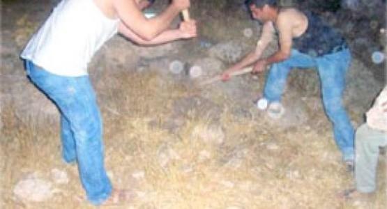 القبض على 4 أشخاص بينهم امرأة خططوا للحفر عن كنز مدفون في غابة بطنجة