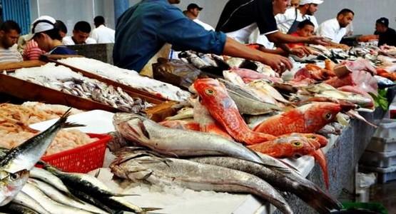 تقرير أسود يكشف أسباب ارتفاع أسعار السمك مع أول أيام رمضان