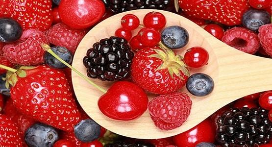 جهةالشمال تنتج حوالي 44 ألف و980 طن من الفواكه الحمراء