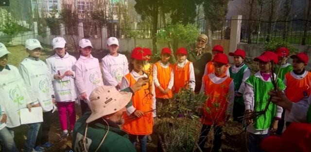 مدرسة مولاي عبد السلام بن مشيش بتطوان تفوز بمسابقة البستان المدرسي