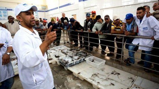 بعد منع دخوله إلى سبتة المحتلة … انخفاض أسعار السمك في تطوان و النواحي