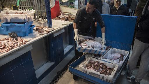تجار سبتة يهربون السمك بطرق غير قانونية لا تحترم الشروط الصحية