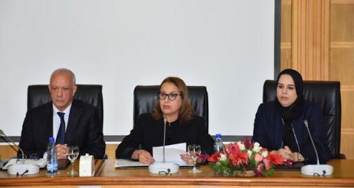 جائحة كورونا : مجلس جهة طنجة تطوان الحسيمة يخصص 20 مليون درهم لدعم الساكنة المتضررة