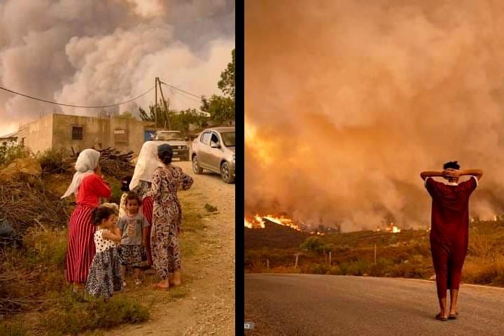 شفشاون: تواصل الجهود لإخماد حريق أتى على نحو 725 هكتار من الغطاء الغابوي