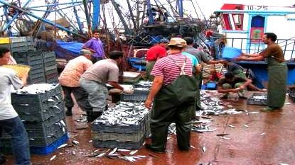 الصيادون المصابون بأنفلونزا الخنازير يعالجون بميناء الداخلة