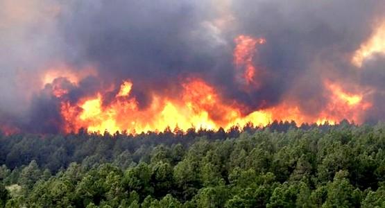 """بسبب حريق غابوي ..عامل عمالة المضيق الفنيدق """" حسن بويا """" يقضى ليلة كاملة بجانب فرق الاطفاء. (صور)"""