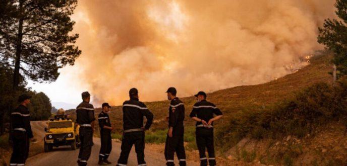 """السلطات تسيطر على حريق غابة """"سوكنا"""" بشفشاون وتضرر 1100 هكتار من الغطاء الغابوي"""